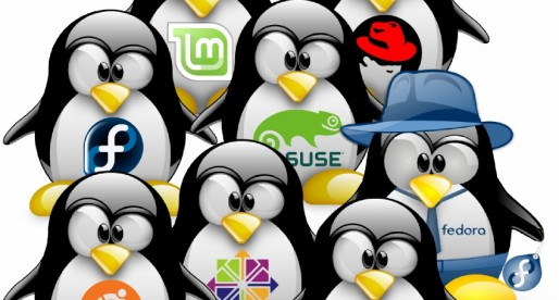 Linux Leads The Public Server Space But How Does It Fare On Desktop Usage?