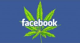 Facebook Is Shutting Down Pages Over Marijuana Sales