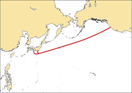 Google  undersea cable